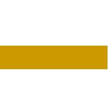 home-logo-dt-02